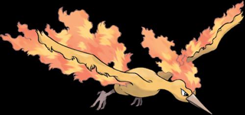 comment avoir les trois oiseaux legendaires dans pokemon x