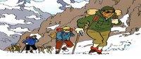 Aventures de Tintin (Les)